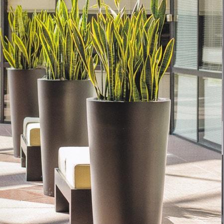 ... interior plantscape design & containers photo courtesy of ASI Earthforms ...