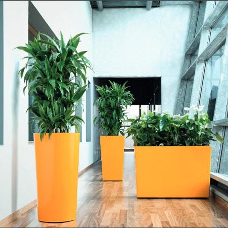 ... interior plantscape design & containers photo courtesy of ASI Earthforms